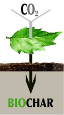 Carbonisation_process-fr0
